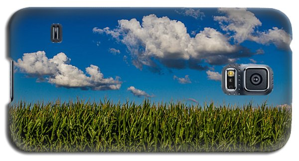 Corn Field Galaxy S5 Case