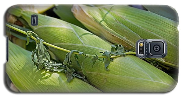 Corn Husks Galaxy S5 Case by John Hoey