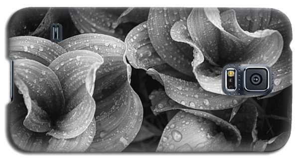 Galaxy S5 Case featuring the photograph Corn Lilies - Black And White by The Forests Edge Photography - Diane Sandoval