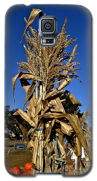 Galaxy S5 Case featuring the photograph Corn Stalk by Michael Gordon