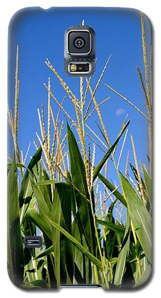 Corn Tassels And Moon Galaxy S5 Case