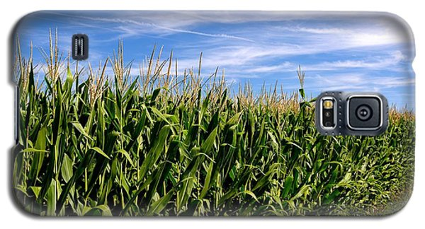 Cornfield And Clouds Galaxy S5 Case