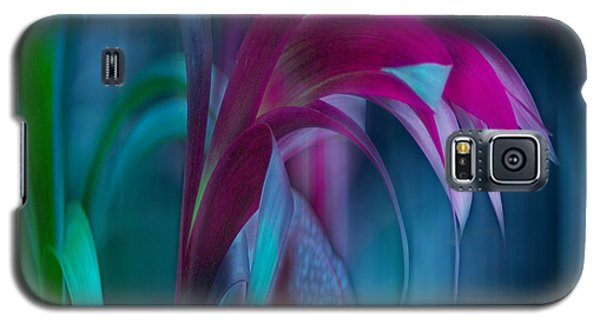 Cornflower Dreams Mindscape Galaxy S5 Case