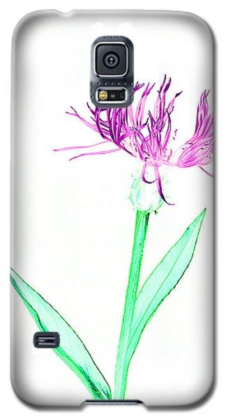 Cornflower No.3 Galaxy S5 Case