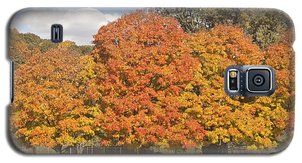 Corning Fall Foliage 1 Galaxy S5 Case