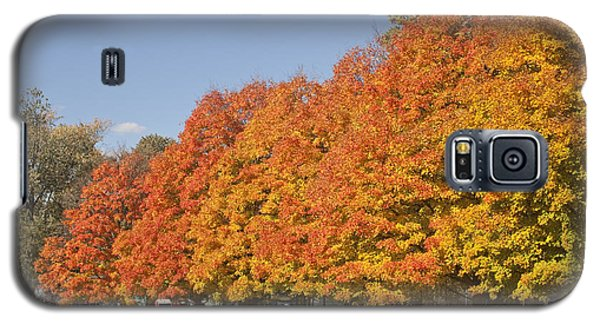 Corning Fall Foliage 3 Galaxy S5 Case