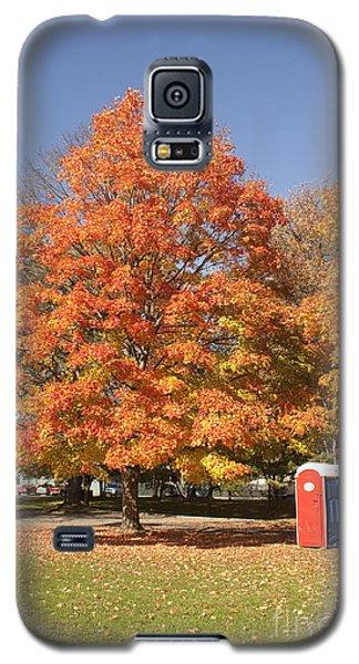 Corning Fall Foliage - 4 Galaxy S5 Case
