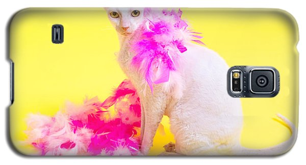 Cornish Rex Galaxy S5 Case by Verena Matthew