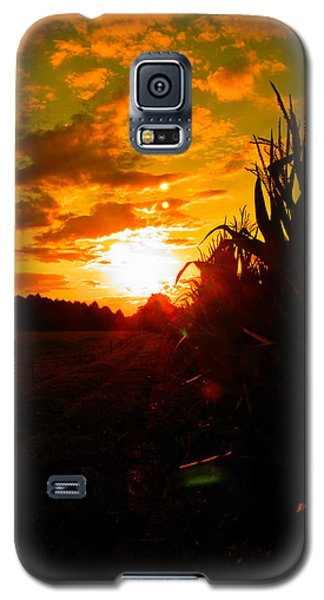 Cornset Galaxy S5 Case by Nick Kirby