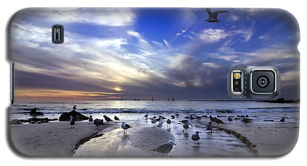 Corona Del Mar Galaxy S5 Case by Sean Foster