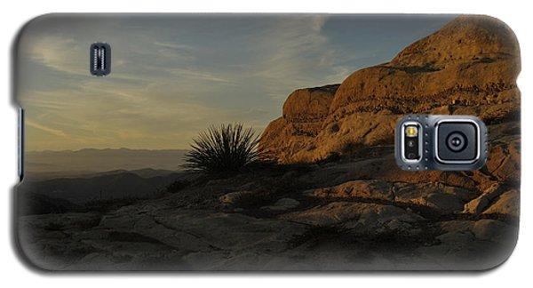 Corral Galaxy S5 Case