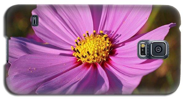 Cosmos Love Galaxy S5 Case by Julie Andel