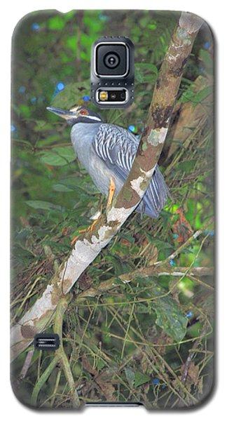 Costa Rica Heron Galaxy S5 Case