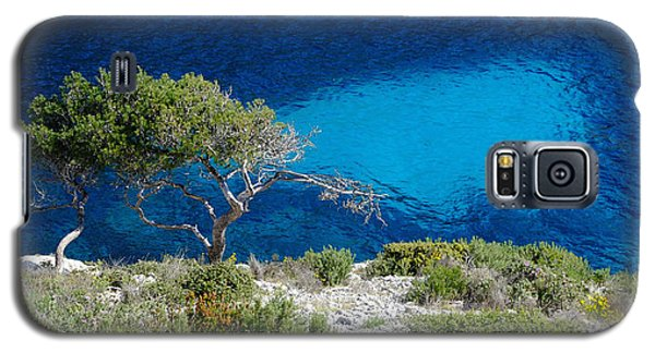 Pine Trees At Azure Waters Galaxy S5 Case