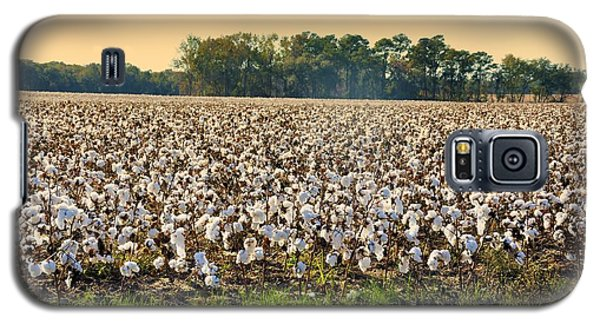 Cotton Fields Back Home Galaxy S5 Case by Jan Amiss Photography