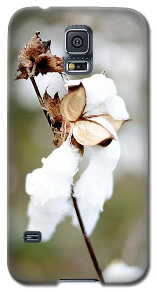 Galaxy S5 Case featuring the photograph Cotton Picking by Linda Mishler