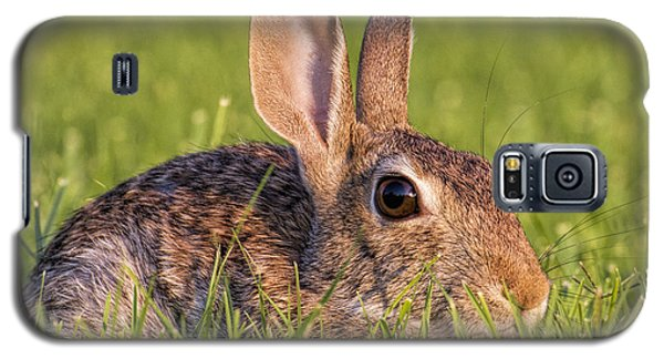 Cottontail Galaxy S5 Case