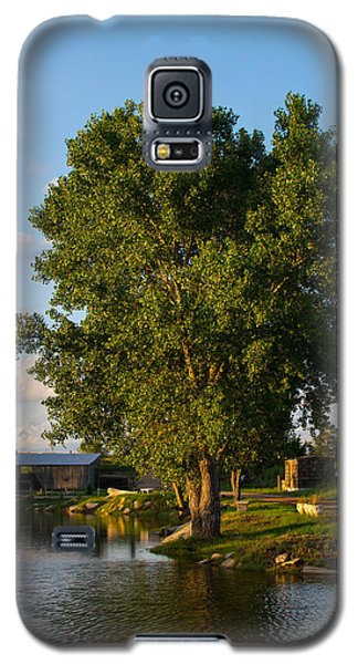 Cottonwood Galaxy S5 Case