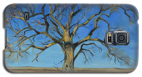 Cottonwood On The North 40 Galaxy S5 Case by Pattie Wall