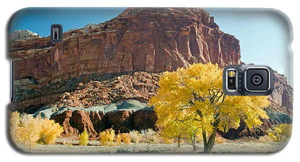Cottonwoods In Fall The Castlecapitol Reef National Park Galaxy S5 Case