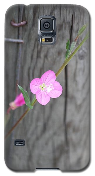Galaxy S5 Case featuring the photograph Country Flower  by Amy Gallagher