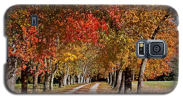 Galaxy S5 Case featuring the photograph Country Lane In Autumn by Jerry Gammon