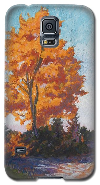Galaxy S5 Case featuring the painting Country Road Cold Fall Morning by Robert Decker