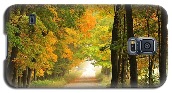 Galaxy S5 Case featuring the photograph Country Road In Autumn by Terri Gostola