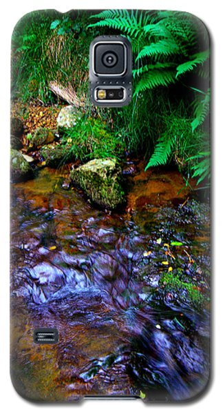 Country Stream Galaxy S5 Case