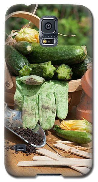 Courgette Basket With Garden Tools Galaxy S5 Case by Amanda Elwell