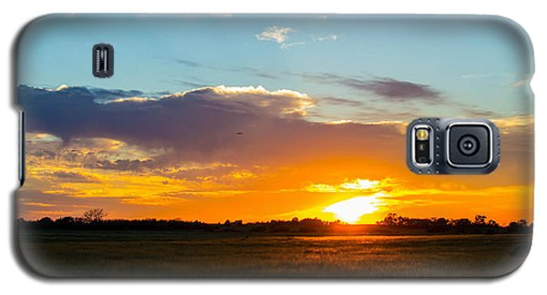 Cow At Sunset Galaxy S5 Case