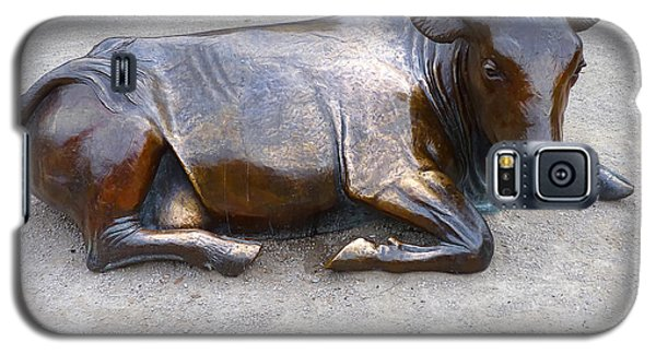 Galaxy S5 Case featuring the photograph Cow In The City by Menega Sabidussi