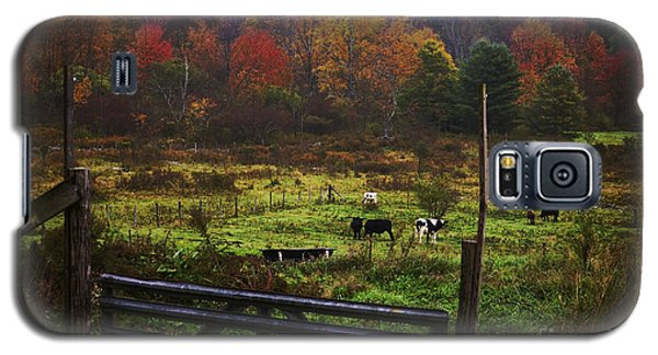Galaxy S5 Case featuring the photograph Cow Pasture In Autumn by Debra Fedchin