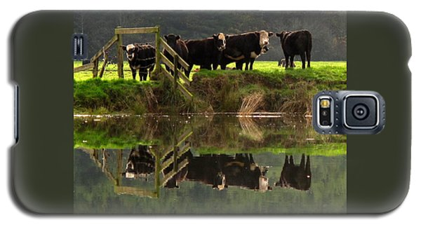 Cow Reflections Galaxy S5 Case