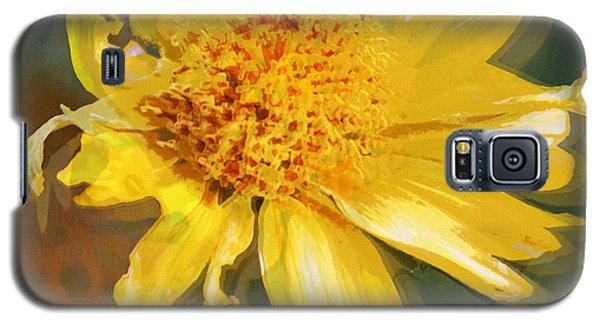 Cowpen Daisy No. 4 Galaxy S5 Case