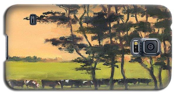 Cows 6 Galaxy S5 Case