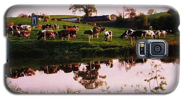 Cows In The Canal Galaxy S5 Case by Martin Howard