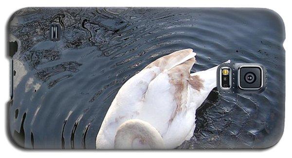 Coy Swan Galaxy S5 Case