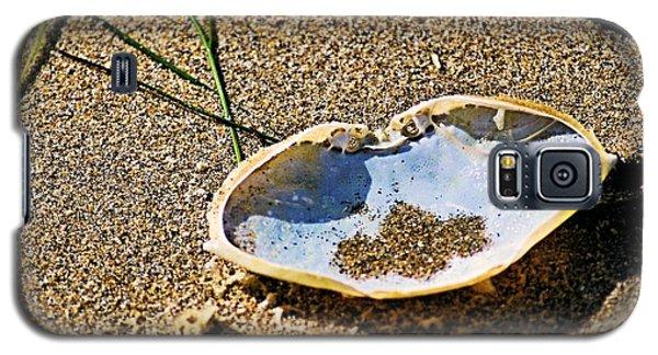 Crab Carapace Galaxy S5 Case by Bob Wall