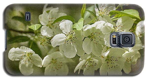 Crabapple Blossoms 4 With Textures Galaxy S5 Case