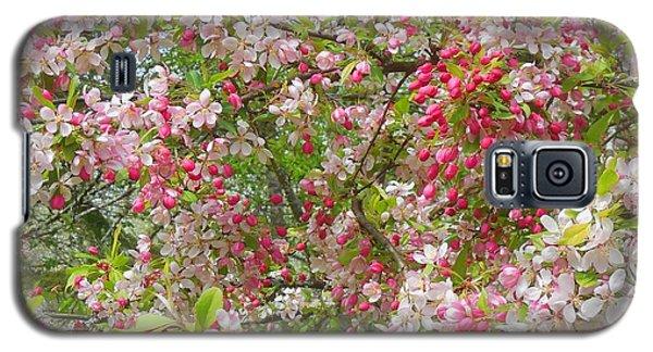 Crabapple Blossoms Galaxy S5 Case by Karen Molenaar Terrell
