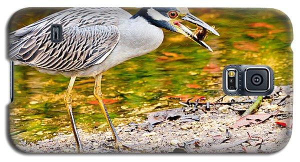 Crabbing In Florida Galaxy S5 Case