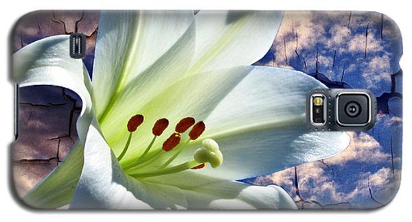 Galaxy S5 Case featuring the photograph Cracked Paint Easter Lily by Marjorie Imbeau