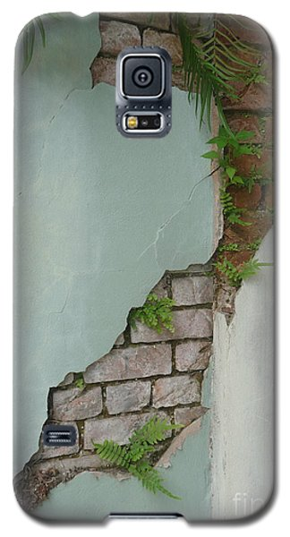 Cracked Galaxy S5 Case by Valerie Reeves