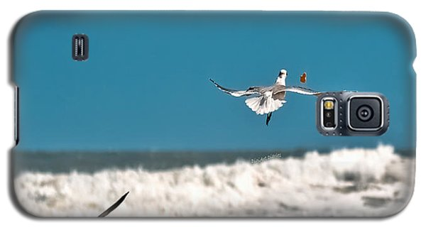 Galaxy S5 Case featuring the photograph Cracker Tracker by DigiArt Diaries by Vicky B Fuller
