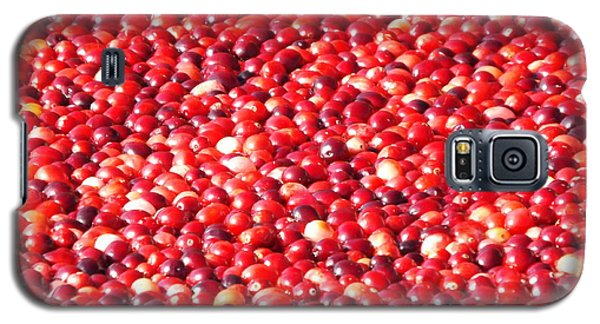Galaxy S5 Case featuring the photograph Cranberries by Jodi Terracina
