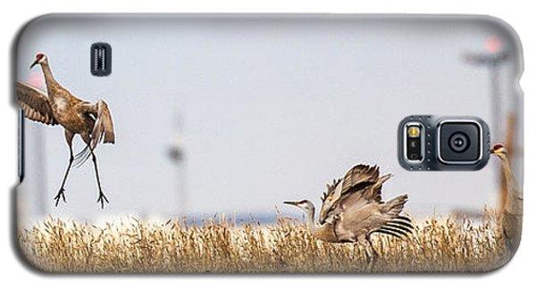 Crane Dance Galaxy S5 Case