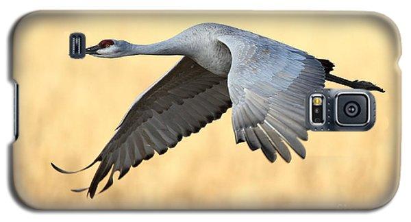Crane Over Golden Field Galaxy S5 Case by Bryan Keil