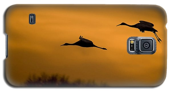 Cranes At Sunset Galaxy S5 Case