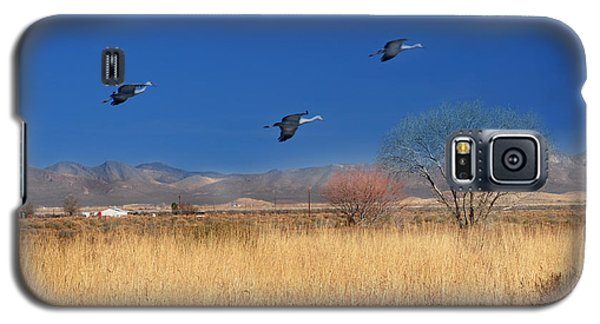 Galaxy S5 Case featuring the photograph Cranes In Flight by Barbara Manis